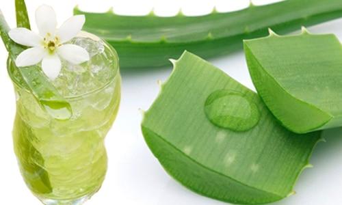 Nha đam được chế biến thành nhiều loại thức uống thơm ngon bổ dưỡng