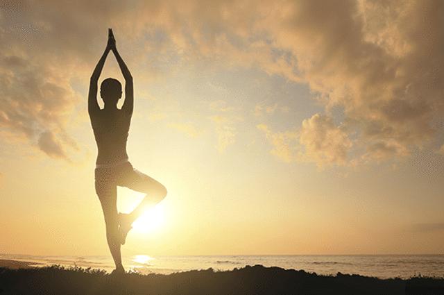 Hãy tập Yoga hàng ngày để giảm cân và có vóc dáng thon gọn