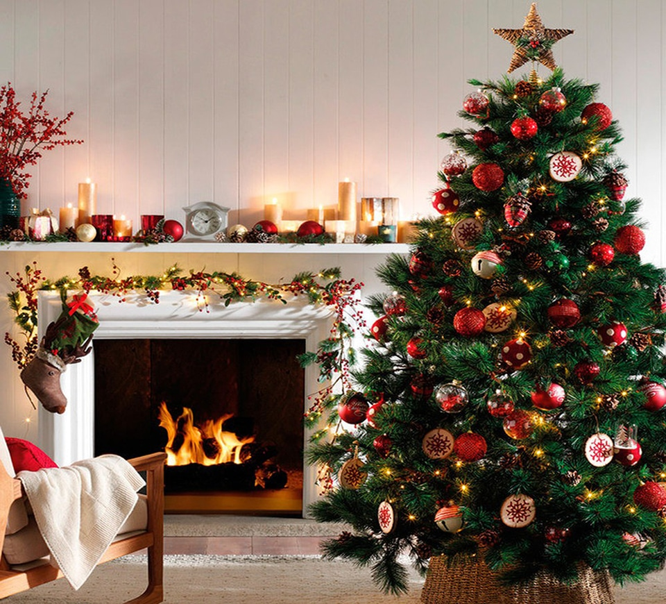 Cây thông Noel ấm cúng