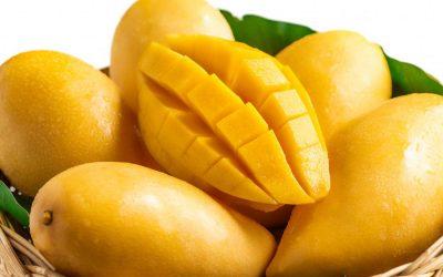 Xoài là loại quả giàu vitamin A, C, E và chất xơ